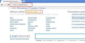 Наиболее популярные в рунете счетчики посещений