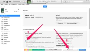 Как сделать резервную копию iPhone сторонним приложением